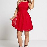 Sleeveless Lace Skater Mini Dress